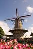 Windmühle in Sluis DSC06424