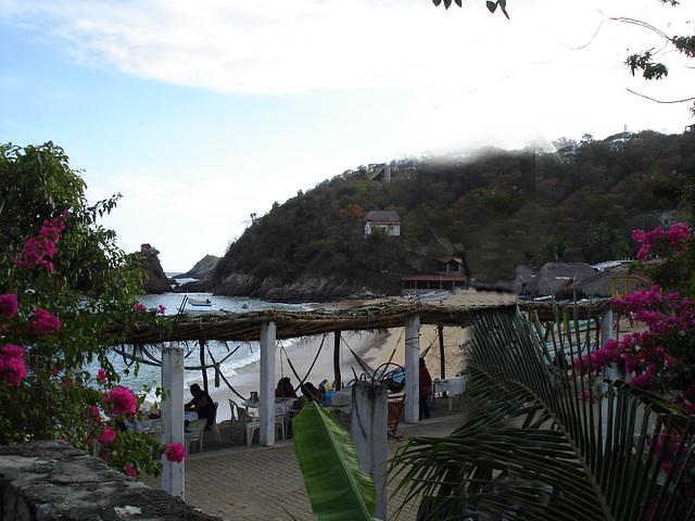 Puerto Angel, Oaxaca. Mexique / 15 janvier 2011. Création Krisontème.