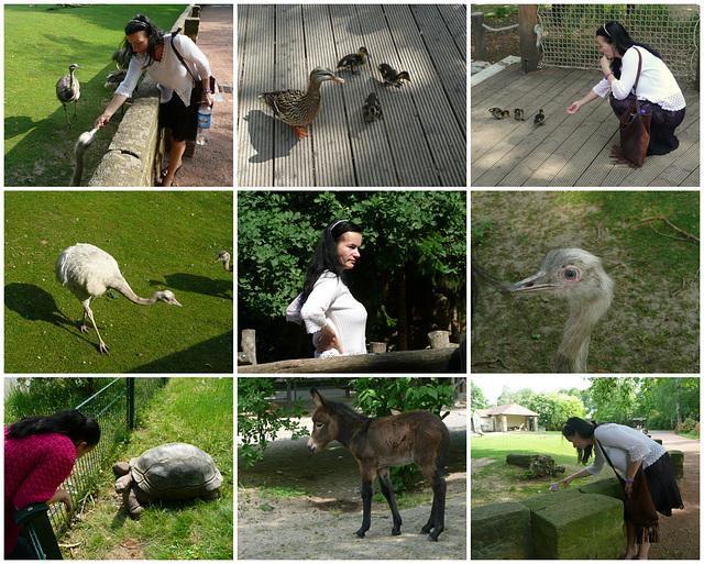 Mensch und Tier - reizender Zoobesuch im Mai