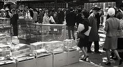 Paris 1965 , île de la Cité
