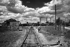 sugar_track