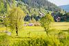 Schwarzwald Menzenschwand DSC05543