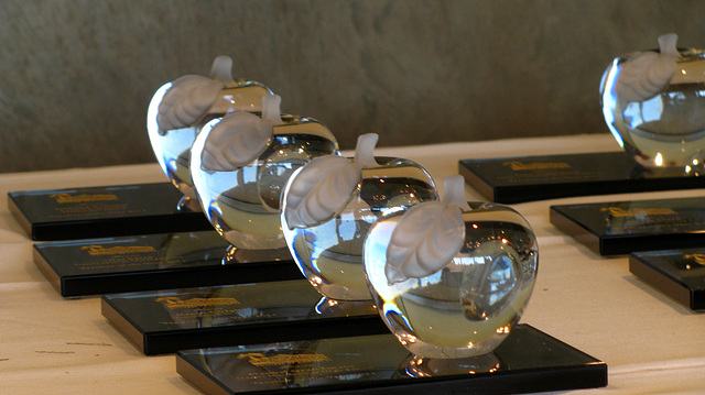 Teacher Of The Year Awards (2322)