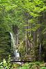 Wasserfall in Menzenschwand DSC05481