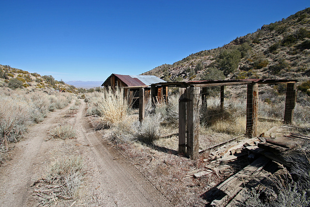 Death Valley National Park - Strozzi Ranch (9530)