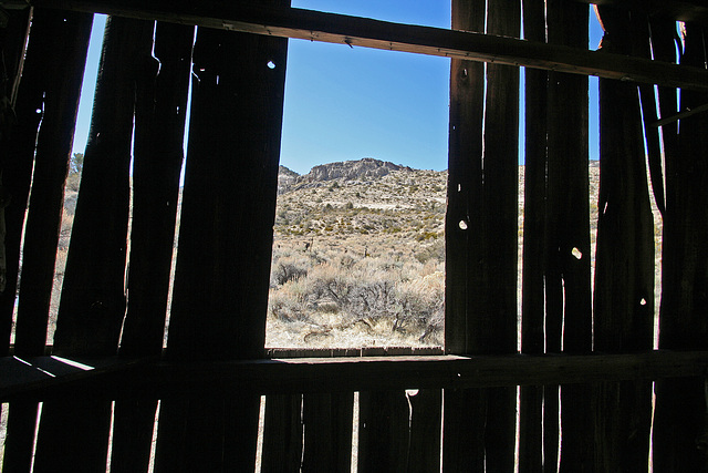 Death Valley National Park - Strozzi Ranch (9555)