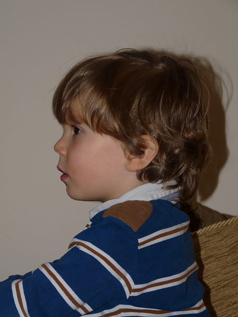 Profile of Dexter at Three Years Old