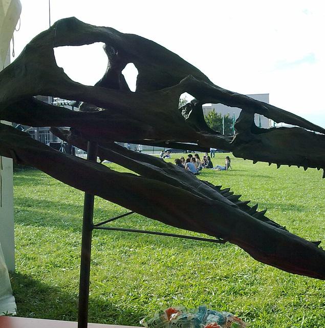 Lisboa, University Campus, dinosaur lunch