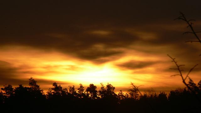 Sonnenaufgang - sunrise -
