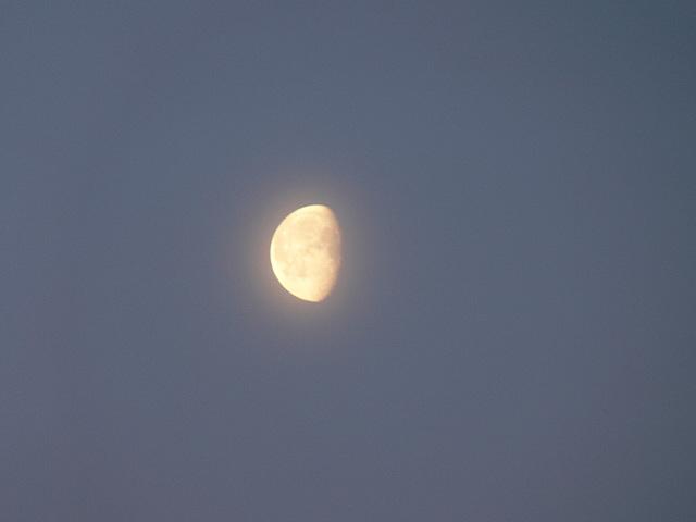 der Mond verabschiedet sich
