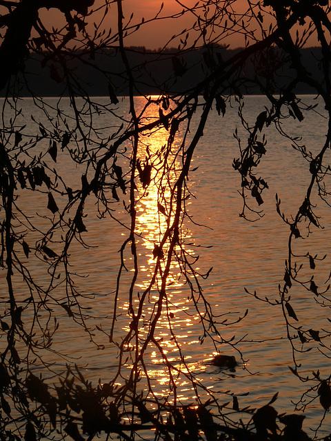 Spiegelung am See