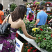 40.Exhibitors.Flowermart.Baltimore.MD.7May2010