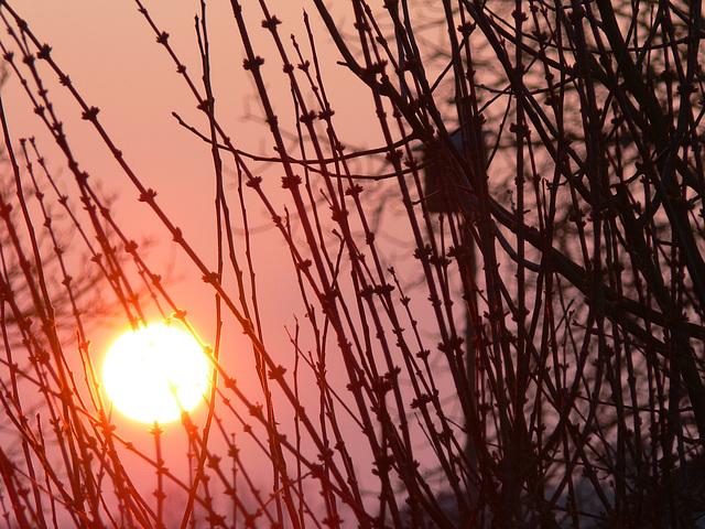 Feuerball am Abendhimmel