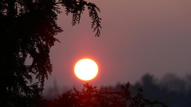 Sonne vor dem Untergang