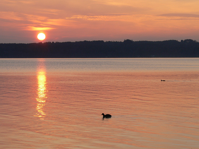 Sonnenaufgang am Starnberger See