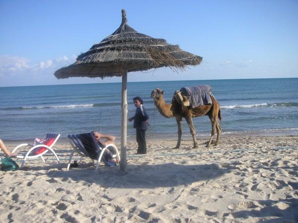Djerba -Tunez