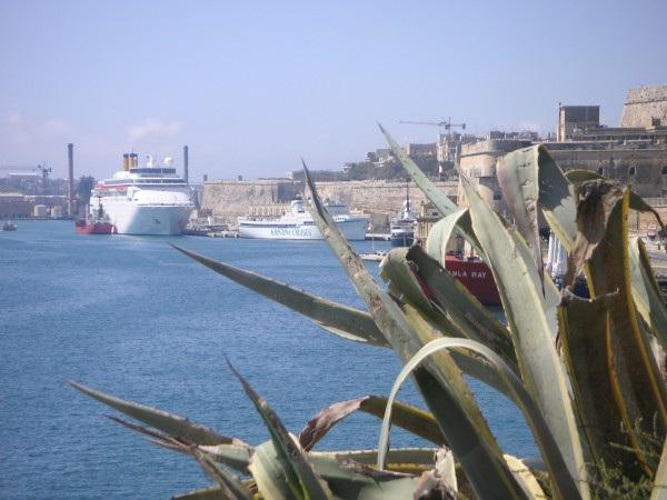 Malta6