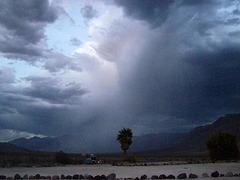 Rain in Saline Valley (1513)