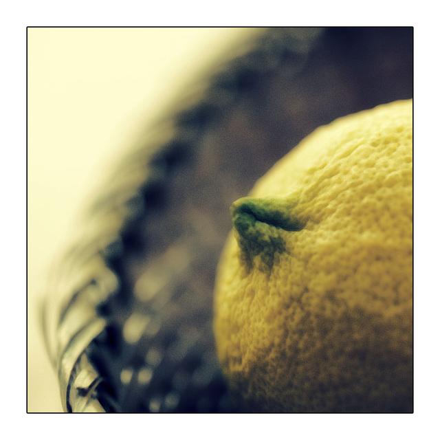 Mimi's Lemon