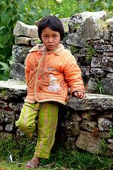 Népal 2010