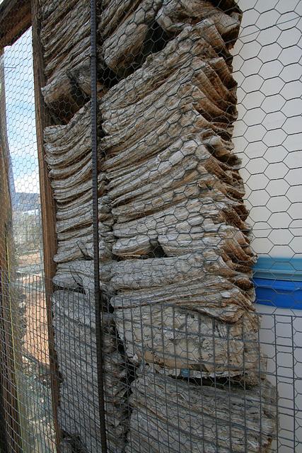 Noah Purifoy Outdoor Desert Art Museum - Aurora Borealis (9817)