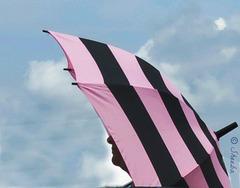 Umbrella   -- 'sun' brella . . .