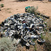 Noah Purifoy Outdoor Desert Art Museum - Shoes (9932)