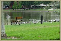 by lake -