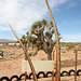 Noah Purifoy Outdoor Desert Art Museum - Earth Piece (9841)