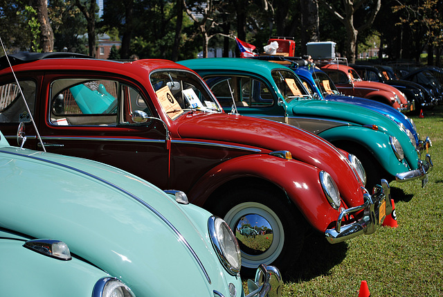The 1-10 Project: 8 Vintage VW Beetles