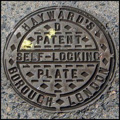 Hayward's D Self-Locking Plate