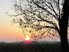 IMG 0184 Sonnenuntergang