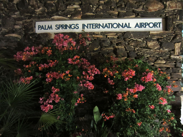 Palm Springs Airport (0158)