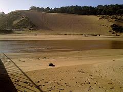 Dune (1)
