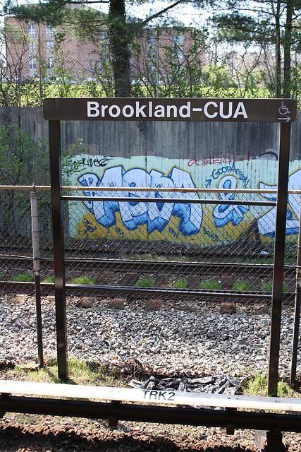 29.GraffitiTagging.WMATA.BrooklandCUA.NE.WDC.6April2011