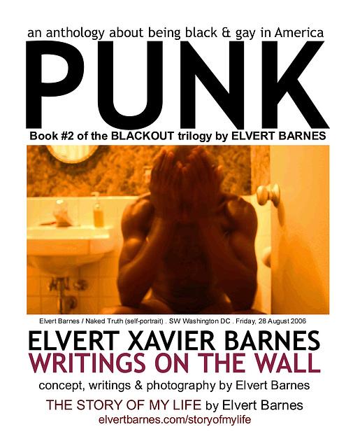 BookCover1.PUNK.Blackout2.ElvertBarnes