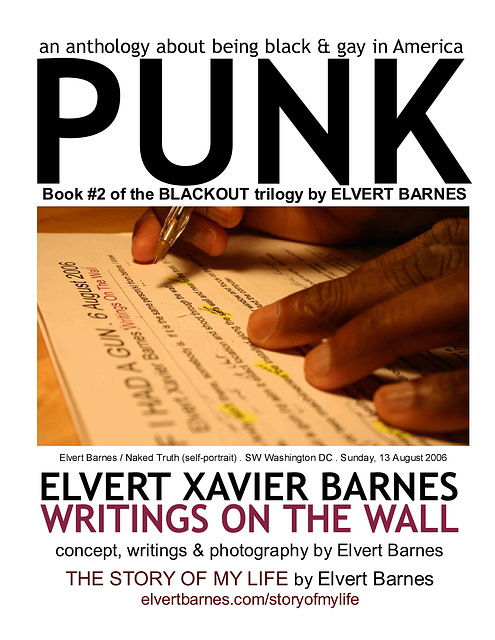 BookCover2.PUNK.Blackout2.ElvertBarnes