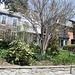 17.Houses.1500BlockQ.NW.WDC.15April2011