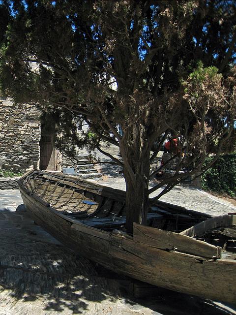 IMG 2224 Boat-Tree