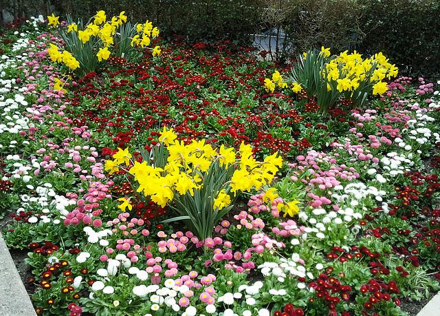 Ein kleiner Vorgarten....