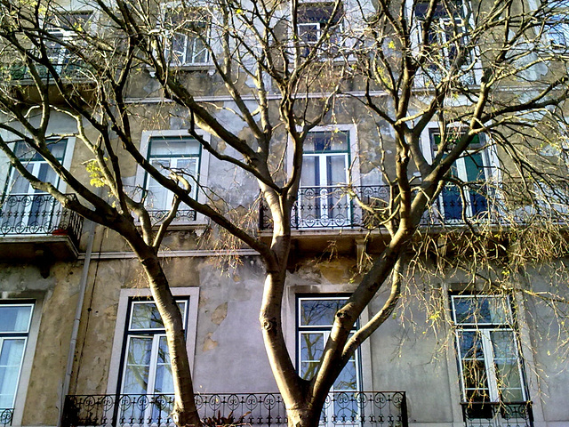 Benfica, old houses (24)