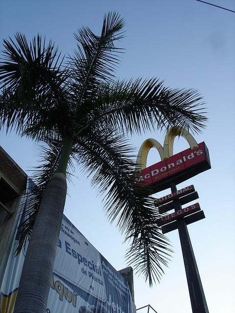 Acapulco, Mexique / 9 février 2011.