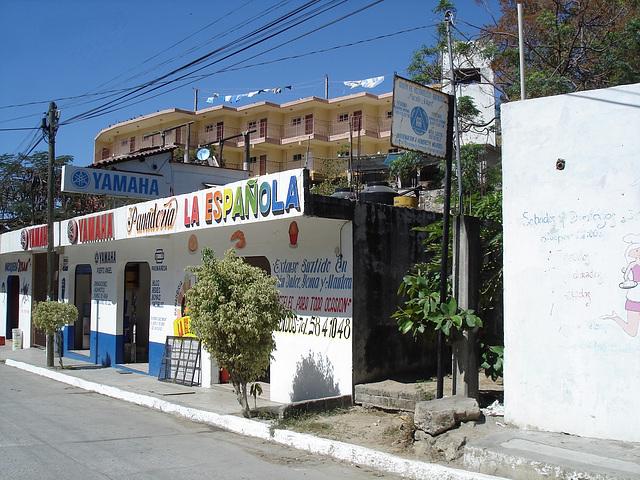 Puerto Angel, Oaxaca. Mexique / 25 janvier 2011.