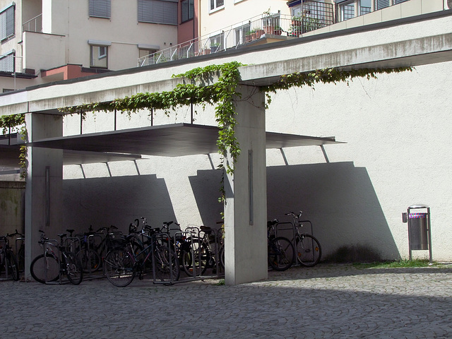 bycicle flock