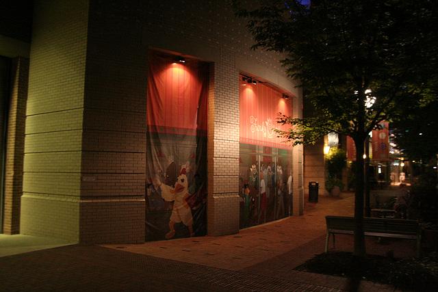 71.Night.CrystalCity.ArlingtonVA.8August2007