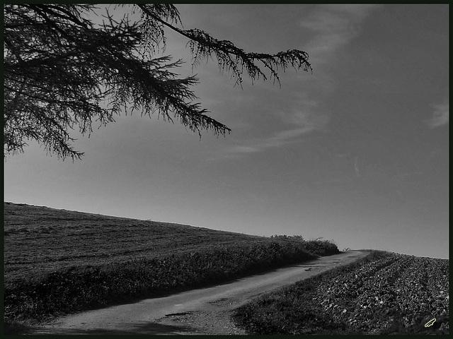 der weg ist das ziel#