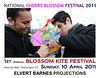 1stBlossomKiteFestival2011