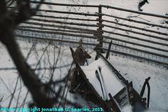Telc, Picture 11, Kraj Vysocina, Moravia (CZ), 2011