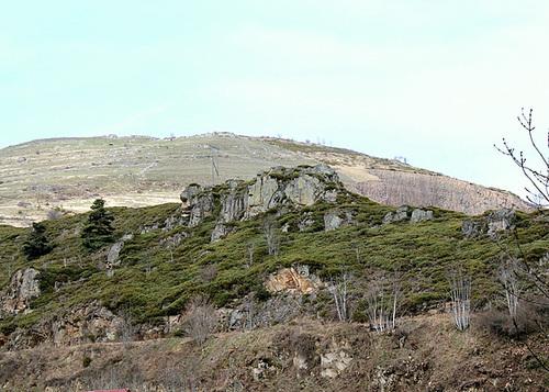 Landes à Cytisus purgens et Fétuques