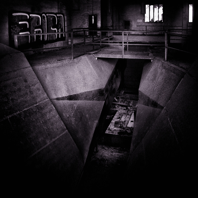 erica's_purple_basement